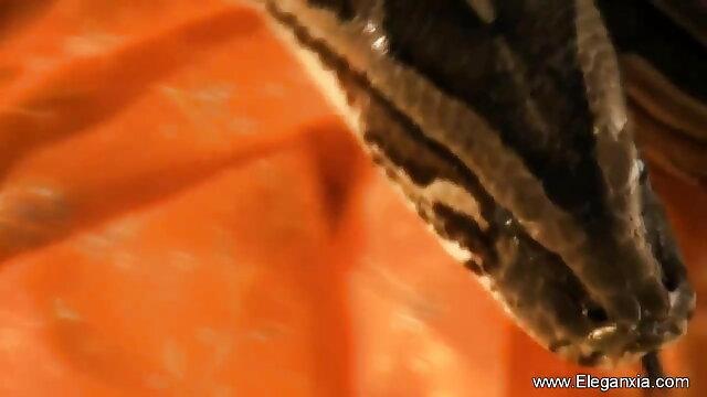 आबनूस वेब इंग्लिश मूवी वीडियो में सेक्सी कैमरा: कैंडी